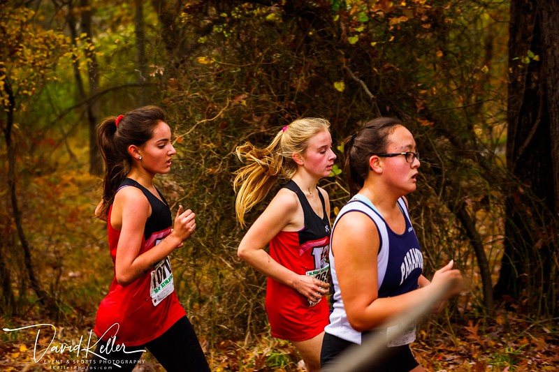 WEHS XC 2018-1103 Girl's State Sectionals 6913