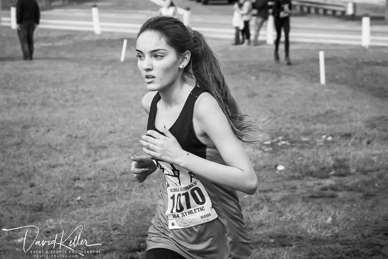 WEHS XC 2018-1103 Girl's State Sectionals 6979-3