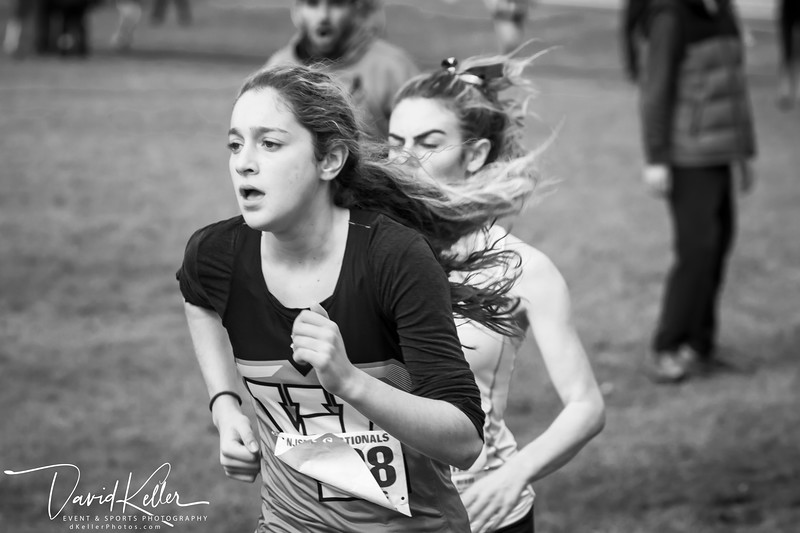 WEHS XC 2018-1103 Girl's State Sectionals 6952-2