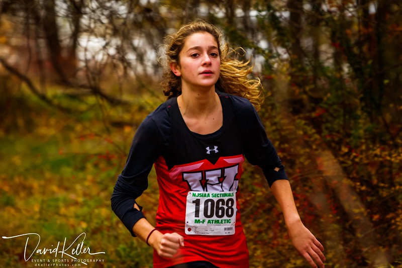 WEHS XC 2018-1103 Girl's State Sectionals 6905