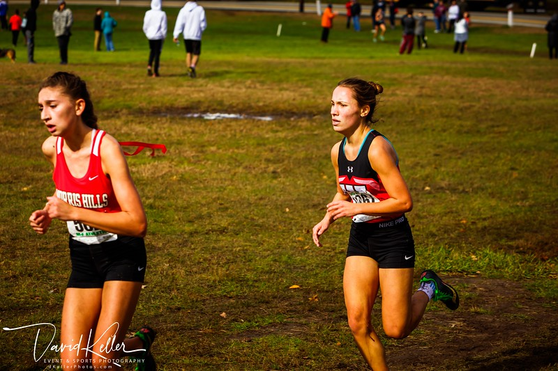 WEHS XC 2018-1103 Girl's State Sectionals 6932