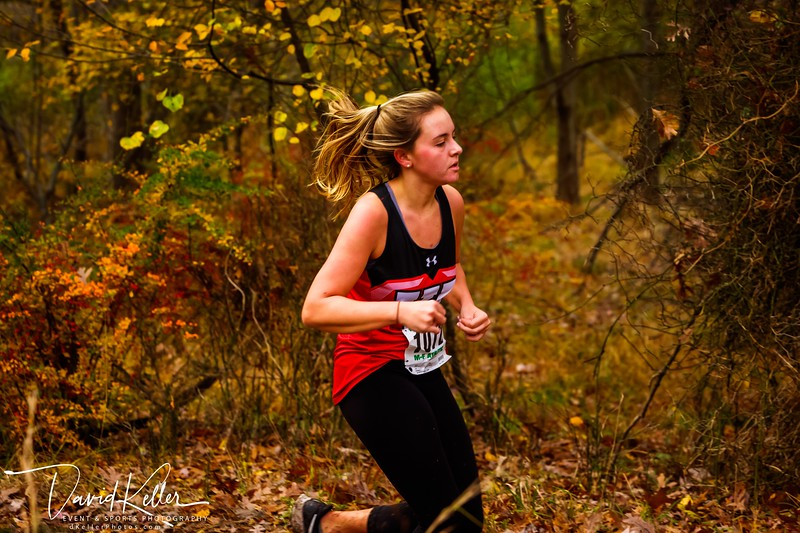 WEHS XC 2018-1103 Girl's State Sectionals 6920