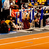 WEHS-Track-Var-2017-0211-NJSIAA-Group-Championships-2073