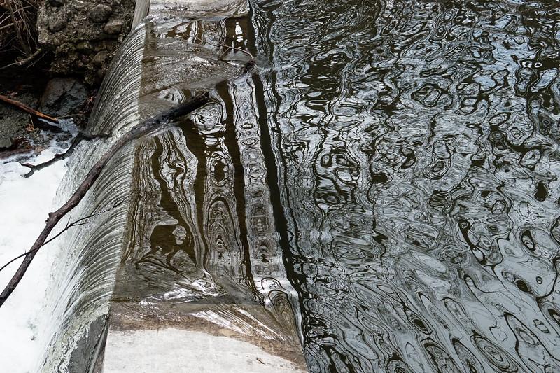 Reflections at Morton Arboretum