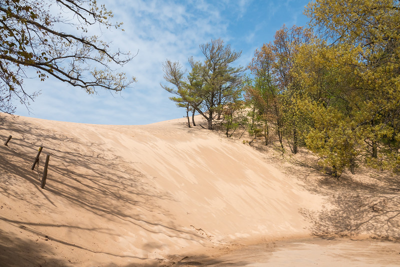 Shifting Dunes at Silver Lake State Park