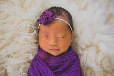 |abigail|newborn