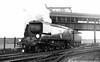 21C157 Biggin Hill Dover c1948