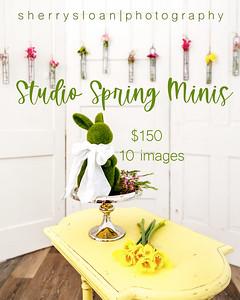 Spring Mini
