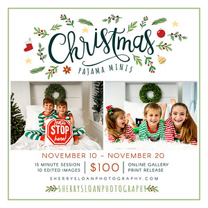 StudioStrawberry-Green-Christmas-Floral-Mini-Sessions copy