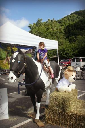 STAR Ranch Yard Sale event