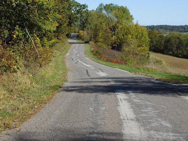 Typical Country Road - La Crosse