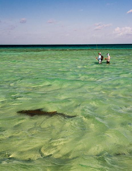 St. Brandon's Atoll - Indian Ocean - © Jim Klug Outdoor Photography / Confluence Films