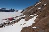 Antarktispetrell, ANTARCTIC PETREL COLONY, SVARTHAMAREN, ANTARCTICA, ANTARKTIS, TOR