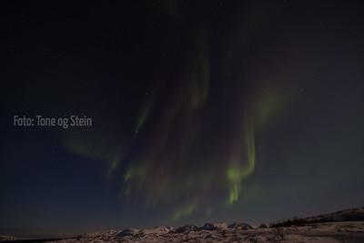 NORDLYS, aurora borealis, vannøya, kristoffervalen, fugløykalven fyr