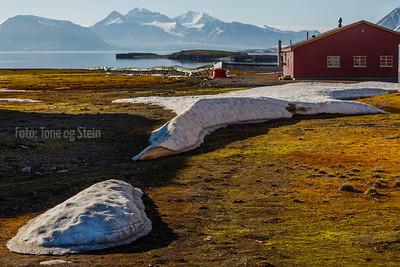 Ny-Ålesund, Svalbard, Norway