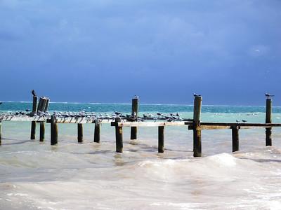 Beach -3 Seagulls are enjoying, too...