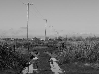 20110220_10-19-25_foss