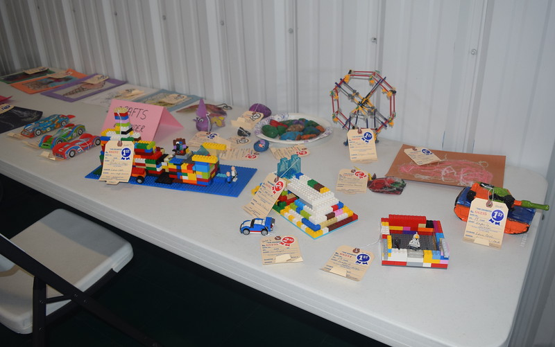A variety of lego creations were on display at the Crook Fair Saturday, July 29, 2016.
