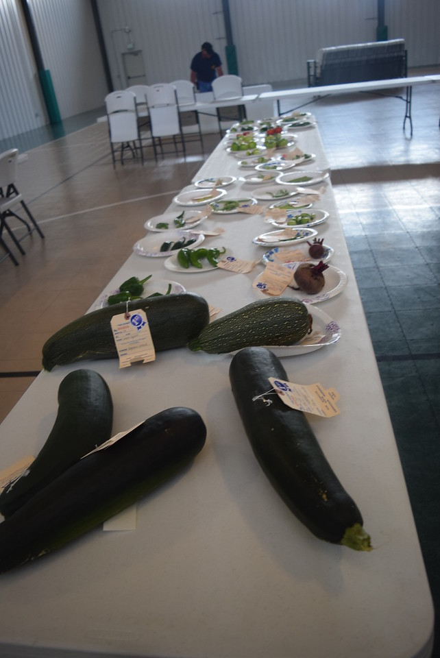 A variety of vegetable exhibits were on display at the Crook Fair Saturday, July 29, 2016.
