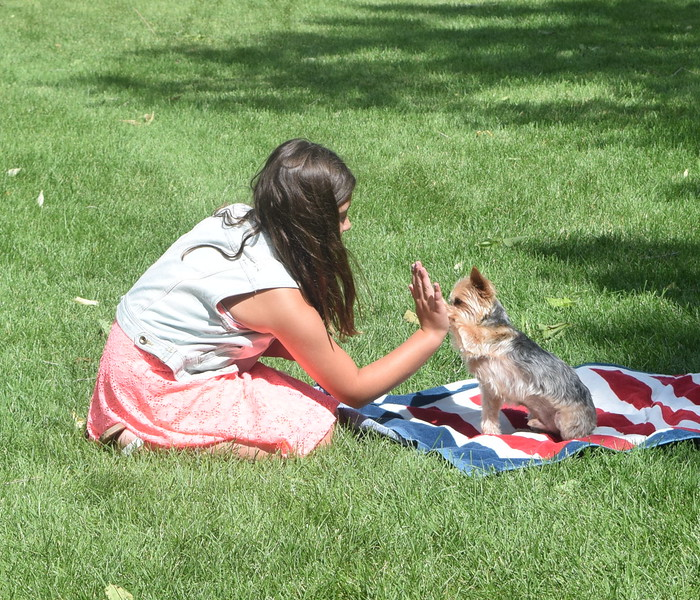 """Kiley Long and her dog Duncan display their """"Best Trick,"""" a high five, at the Kids Pet Show Saturday, July 16, 2016. They took first place in the division."""