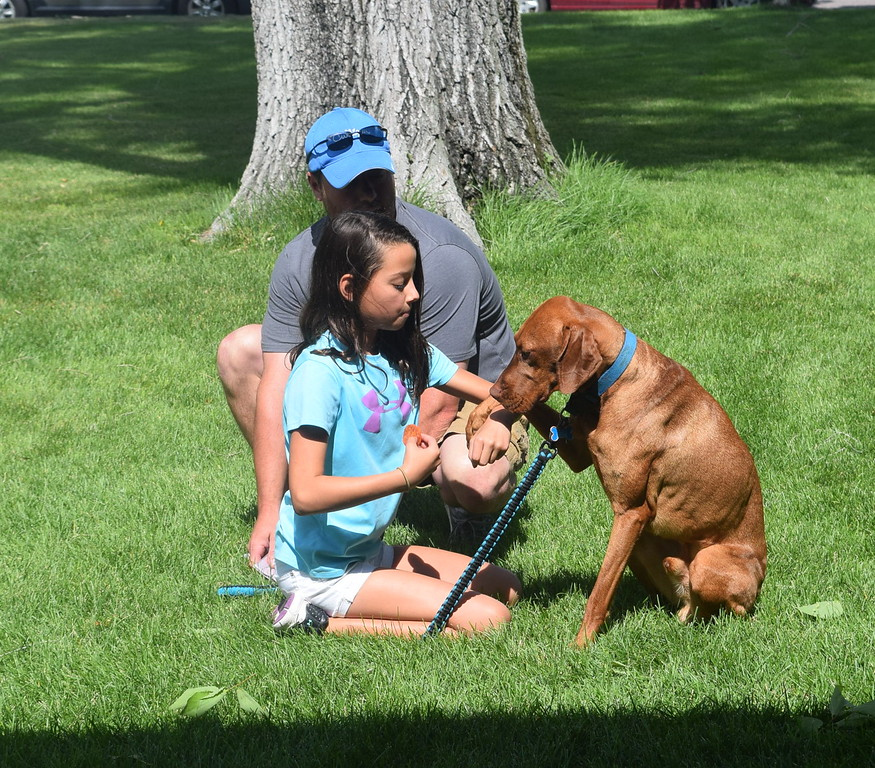 "Drew Baseggio and her vizsla Hogan perform their ""Best Trick"" at the Kids Pet Show Saturday, July 16, 2016. They took second place in the division."