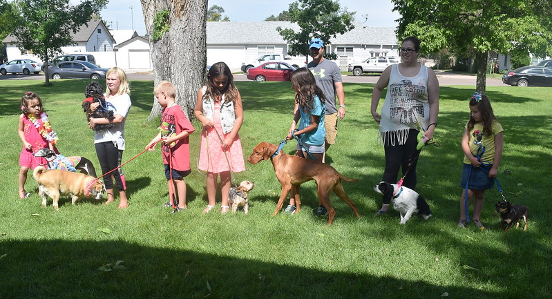Competitors in the Adorably Cute division ready their dogs at the Kids Pet Show Saturday, July 16, 2016. Taking the top prize in this division was Kiley Long, center, and her Yorkshire Duncan.
