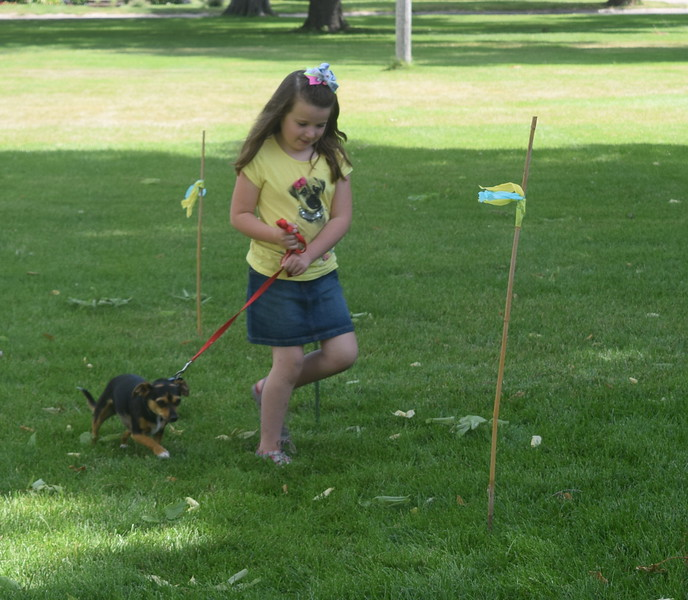 Reese Toffin and chawini Birdie make their first place run through the agility course at the Kids Pet Show Saturday, July 16, 2016.