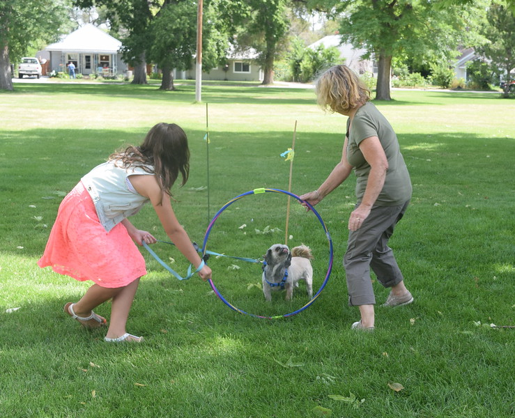 Kiley Long and her Shih Tzu Zoey make their way through the agility course at the Kids Pet Show Saturday, July 16, 2016. They placed second in the division.