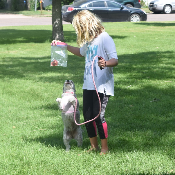 """Carlee Hicks and her poodle Delila perform their """"Best Trick"""" at the Kids Pet Show Saturday, July 16, 2016."""