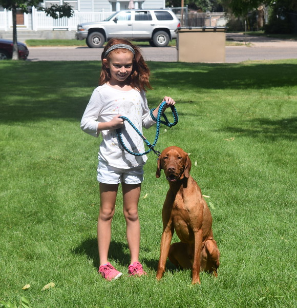 Sydney Baseggio and her dog Hogan, a vizsla, show off their matching hair color as the first place winners in the Pet/Owner Look-alike division at the Kids Pet Show Saturday, July 16, 2016.