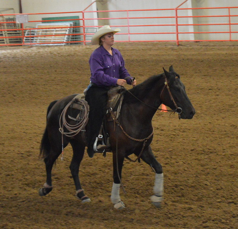 Bailey Nelson, senior working cow horse