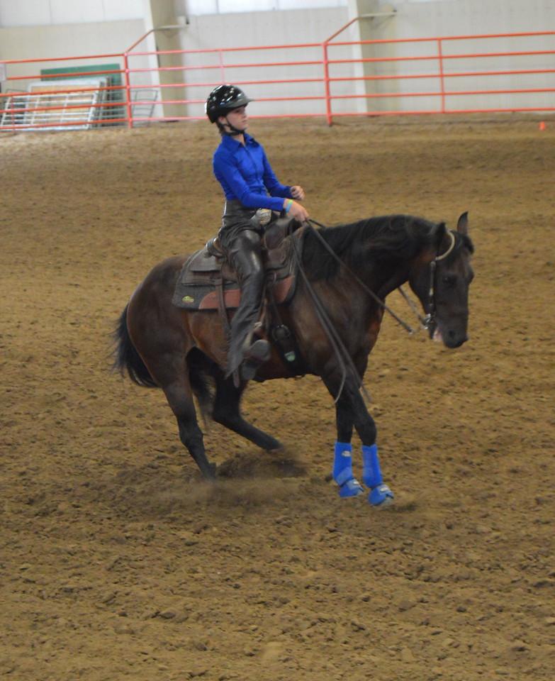 Abby Budd, intermediate working cow horse