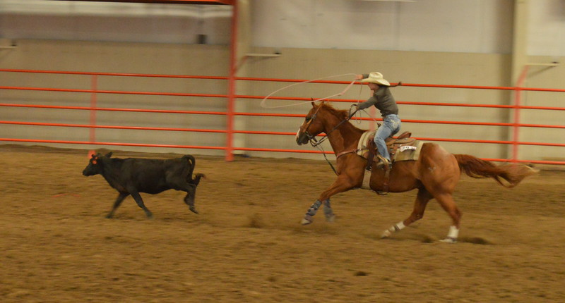 Riata Day, senior breakaway roping, 2016 Logan County Fair Junior Horse Show