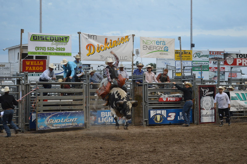 Cory Granger rides Beast Mode to a 73 score during the PBR bull riding competition Tuesday night during the Logan County Fair. Granger was awarded a re-ride because the bull didn't exit the chute properly; he scored no time on the second ride.
