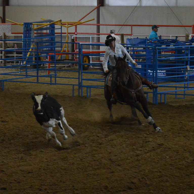 Lacey Johnson, intermediate working cow horse