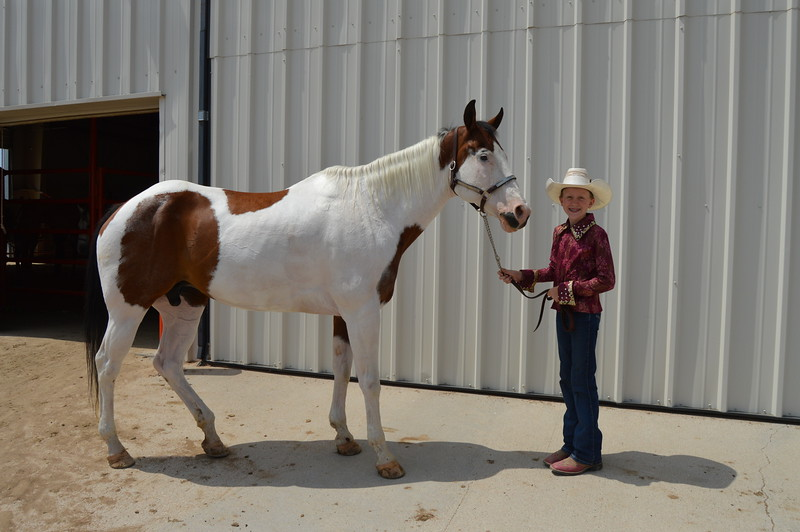 TobiBeth Erickson, intermediate champion showman, 2016 Junior Horse Show Logan County Fair