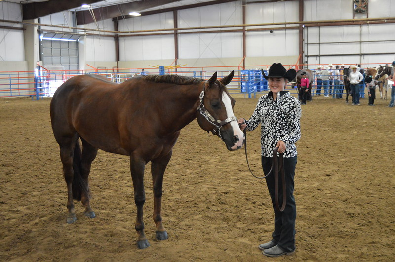 Shelby Robinette, grand champion mare, intermediate champion showman. 2016 Logan County Fair Horse Show halter classes