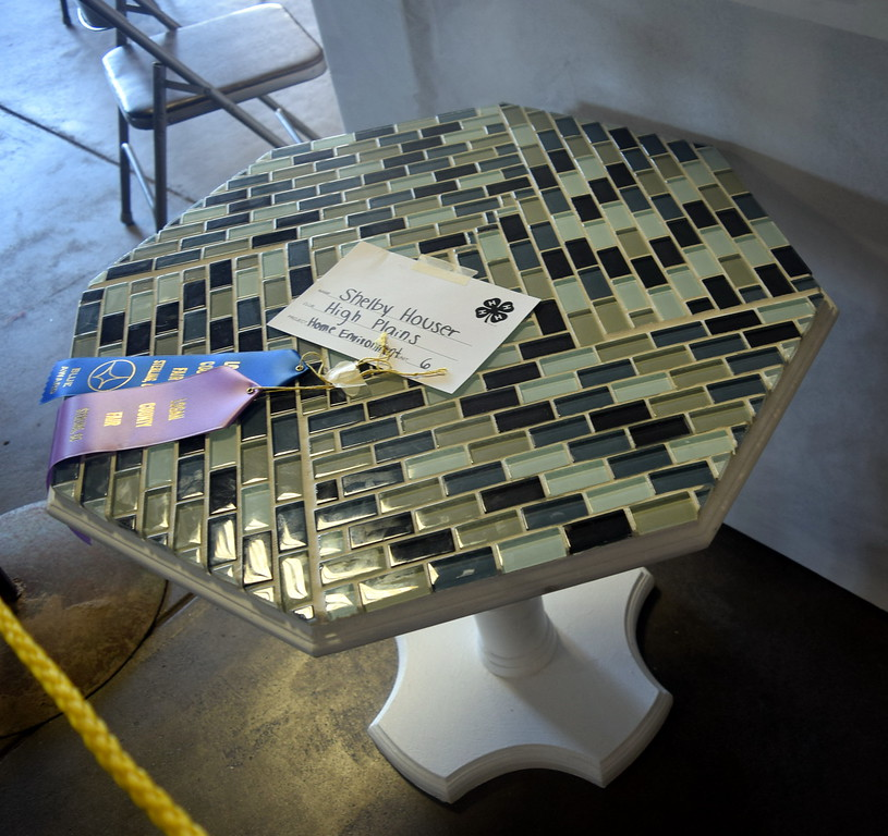 Shelby Houser's table, displayed underneath the grandstands Wednesday, Aug. 3, 2016, at the Logan County Fair, was a champion in the home environment category at the Logan County Fair.
