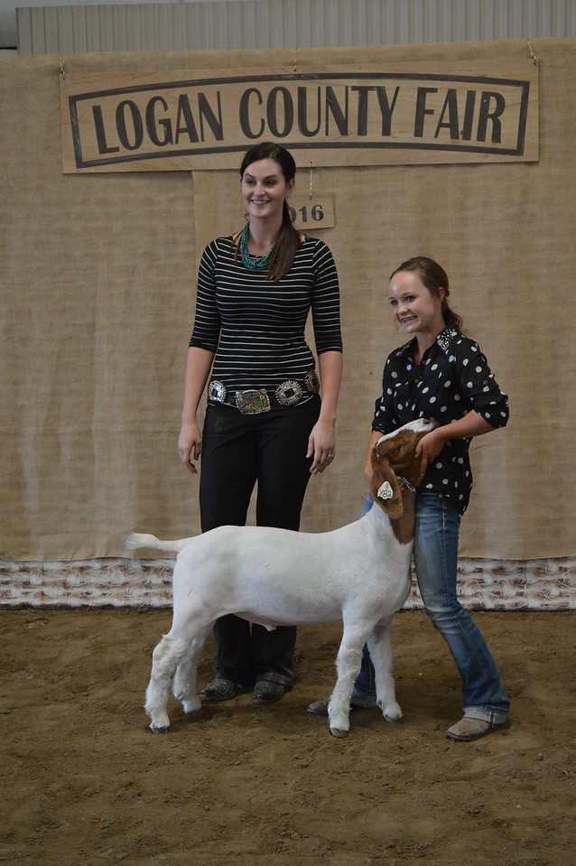 Riata Day, Reserve Champion Middle Heavyweight Goat