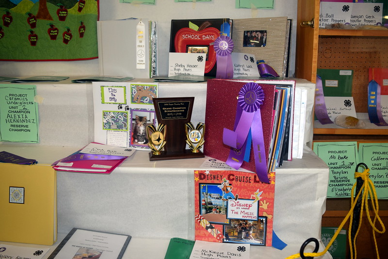 A variety of scrapbook projects were on display underneath the grandstands Wednesday, Aug. 3, 2016, at the Logan County Fair.