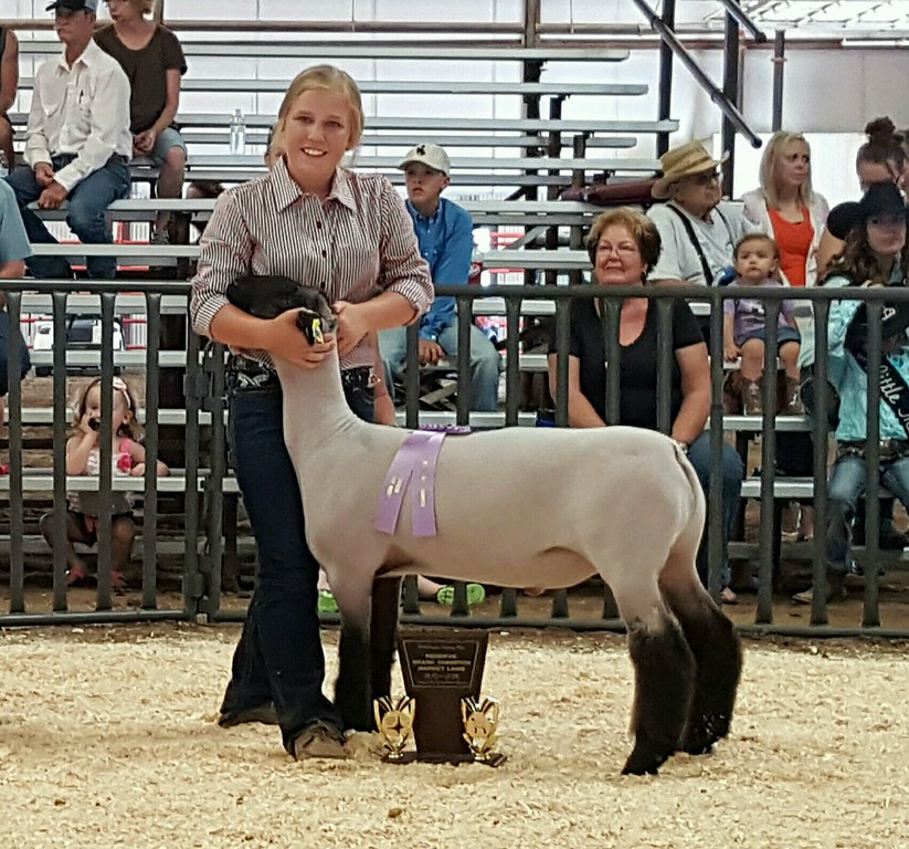 Reserve Grand Champion Market Lamb.jpg Kinlie Lewis, reserve grand champion market lamb. Lewis was also reserve champion senior sheep showman.