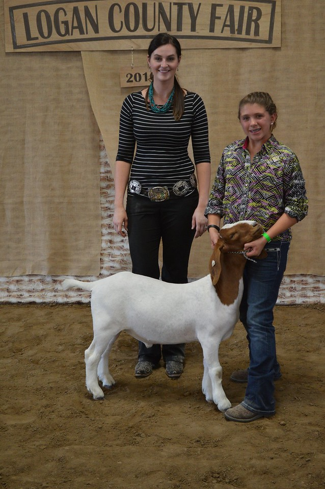Sara Maker, Champion Heavyweight Goat