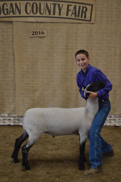 Cooper DeWitt, Reserve Champion Middleweight Lamb