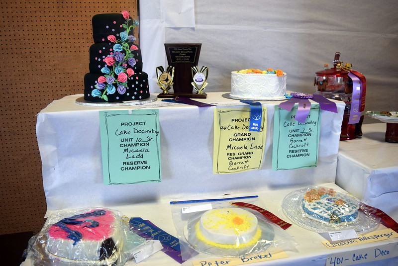 Award winning cake decorating projects were on display underneath the grandstands Wednesday, Aug. 3, 2016, at the Logan County Fair.