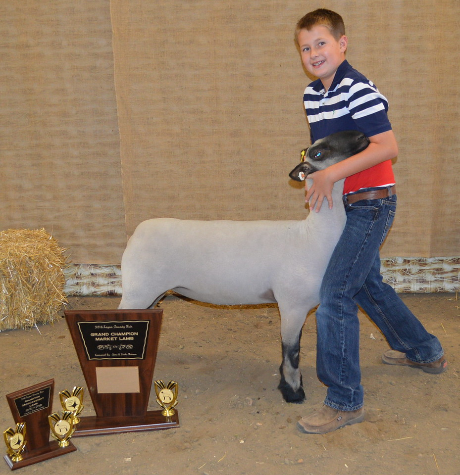 Jaxson Samber, Grand Champion Market Lamb, Champion Middleweight Lamb, Champion Junior Showman.