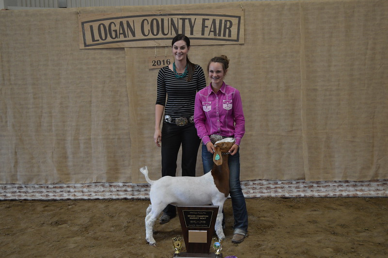 Wacey Day, Grand Champion Market Goat