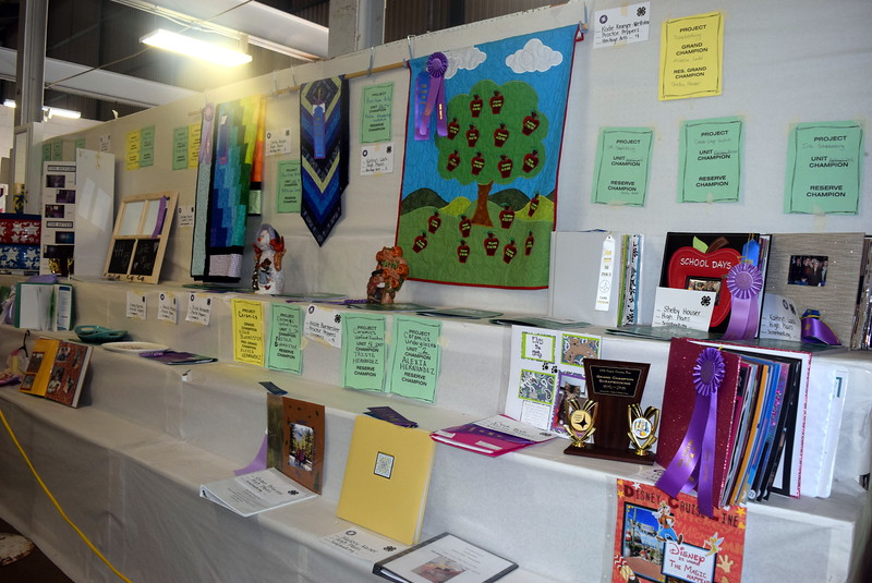 A variety of family and consumer science projects were on display underneath the grandstands Wednesday, Aug. 3, 2016, at the Logan County Fair.