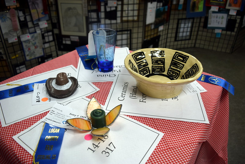 A variety of artwork was on display in the Gary DeSoto Building Thursday, Aug. 4, 2016, at the Logan County Fair.