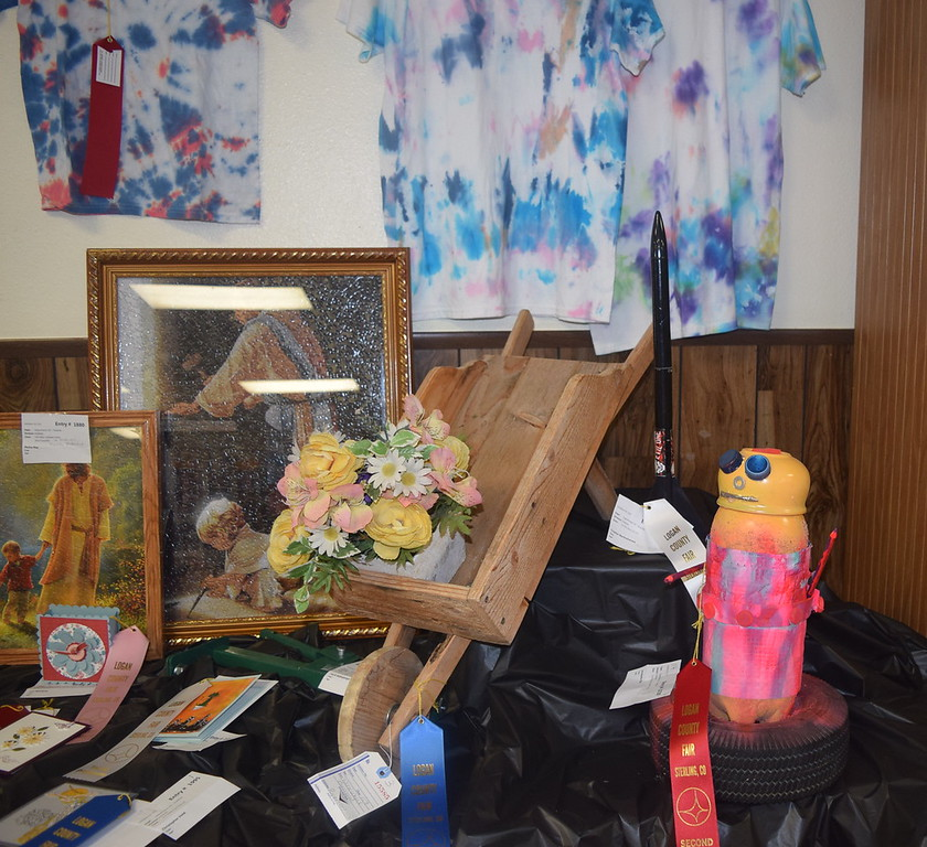 A variety of fine arts projects were on display in the Gary DeSoto Building Thursday, Aug. 4, 2016, at the Logan County Fair.