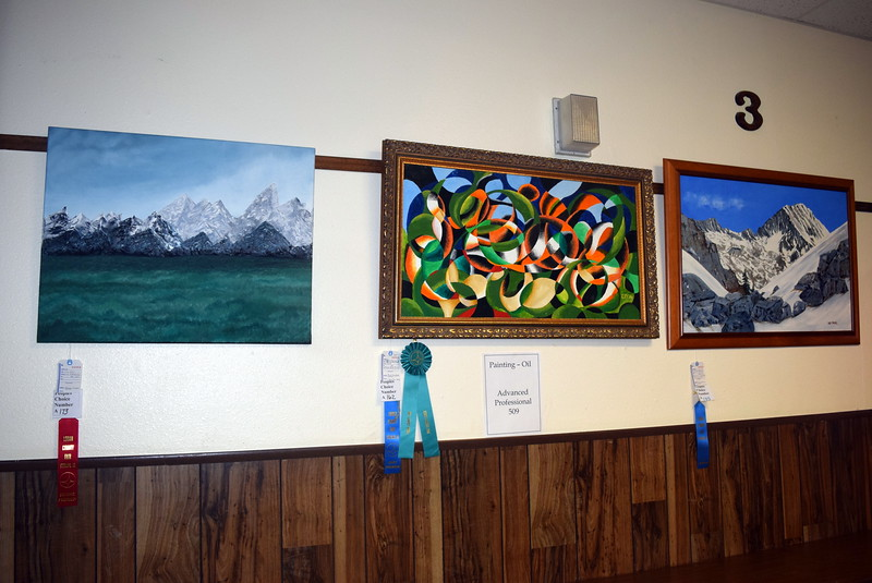 Artwork hangs on display in the Gary DeSoto Building Thursday, Aug. 4, 2016, at the Logan County Fair.